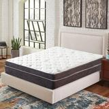 Arsuite 12-Inch Euro Top Firm Foam Encased Mattress/Orthopedic Support For A Restful Night, Size 12.0 H x 60.0 W x 80.0 D in   Wayfair