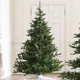 Nobilis Fir Tree - Ballard Designs