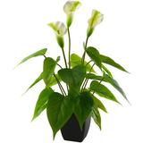 Primrue Artificial Flower Plants Calla Lily Faux Potted Plant w/ Pot For Office,Indoor & Outdoor Kitchen Home Party Decor in Black   Wayfair