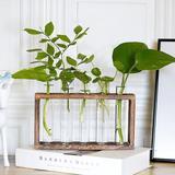Millwood Pines Glass Terrarium Planter, Bud Glass Test Tube Vase, Size 7.08 H x 9.05 W x 1.57 D in   Wayfair 98FD4CE169924736AA5EC207E536FEEF