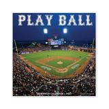 Willow Creek Press Calendars Various - Play Ball 18-Month 2022 Wall Calendar