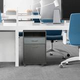 Latitude Run® Mobile File Cabinet Storage Door Shelf Casters Wood/Metal/Steel in Black, Size 23.6 H x 15.7 W x 13.8 D in | Wayfair