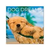TF Publishing Calendars Multi - Dog Dreams 12-Month 2022 Wall Calendar