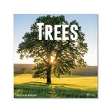 TF Publishing Calendars Multi - Trees 12-Month 2022 Wall Calendar