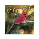 TF Publishing Calendars Multi - Backyard Birds 12-Month 2022 Wall Calendar