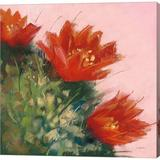 Red Barrel Studio® Blooming Succulent IV By Carol Rowan, Canvas Wall Art Canvas & Fabric in Brown/Red, Size 24.0 H x 24.0 W x 1.5 D in   Wayfair