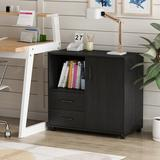 BKB365 Wood File Cabinet, 2 Drawer Mobile Lateral Filing Cabinet, Storage Cabinet Printer Stand w/ Open Storage Shelves For Home Office in Black