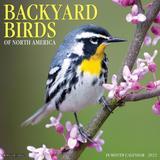 Willow Creek Press Backyard Birds 2022 Wall Calendar