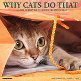 Willow Creek Press Why Cats Do That 2022 Wall Calendar