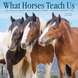 Willow Creek Press What Horses Teach Us 2022 Wall Calendar