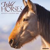 Willow Creek Press Wild Horses 2022 Wall Calendar