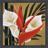 Red Barrel Studio® Sun Kissed IV By Yvette St. Amant, Framed Wall Art in Brown/Red, Size 17.5 H x 17.5 W x 1.5 D in   Wayfair