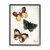 Stupell Industries 45_Trio Of Butterflies Farmhouse Patterned Wings Charming Insects Stretched Canvas Wall Art By Jackie Quigley Wood in Brown