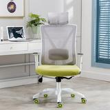 Inbox Zero A&A Furniture,Ergonomic Home Office Chair w/ Adjustable Lumbar Support & Armrests,Breathable Mesh Back & Padded Seat Desk Chair in Green