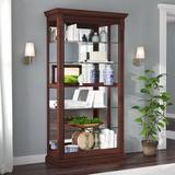 Lark Manor™ Sidmouth Lighted Curio Cabinet Wood/Glass in Brown, Size 80.0 H x 43.0 W x 16.0 D in   Wayfair C3B69B5007324948A998599AFC6CC335