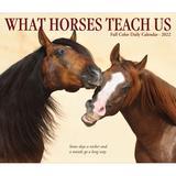 Willow Creek Press What Horses Teach Us 2022 Box Calendar