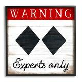 Stupell Industries Warning Experts Only Double Black Diamond Rustic Sign Gray Farmhouse Rustic Framed Giclee Texturized Art By Elizabeth Tyndall Wood