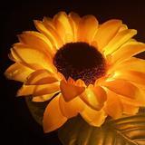 Exgreem Outdoor Solar Sunflower Lights, Fairy Landscape Flower Lights For Garden Pathway Patio Backyard Decoration Set Of 2   Wayfair