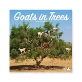 Magnet & Steel Calendars Multi-Color - Goats in Trees 16-Month 2022 Wall Calendar