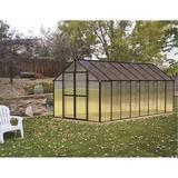 Riverstone Industries Monticello 8' W x 16' D Greenhouse Aluminum/Polycarbonate Panels in Black | Wayfair Mont-16-BK-PREMIUM
