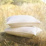 Eastern Accents Loure Down Alternative Plush Support Pillow Down Alternative/100% Cotton in Gray, Size 21.0 H x 37.0 W x 6.0 D in | Wayfair