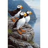 Toland Home Garden Puffin Perfect 28 x 40 Inch Decorative Coastal Sea Bird House Flag