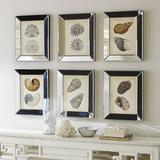 "Shells in Mirror Frame Art 20"" x 16"" - Ballard Designs"