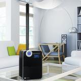 PureGuardian 2 Gal. Dual Mist Ultrasonic Console Humidifier 400 Sq. Ft. in Black, Size 14.0 H x 9.75 W x 7.125 D in | Wayfair H8000BCA