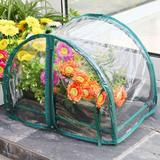 Zenport 1.5 Ft. W x 1 Ft. D Mini Greenhouse, Size 12.0 H x 17.0 W in | Wayfair SH3270-12.5