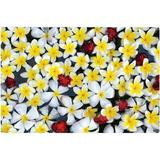 Imagine Work Surface Floating Flowers Huge Extra Large Non-Slip Desk Pad Plastic in Yellow, Size 24.0 H x 36.0 W in | Wayfair DS003