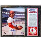"""St. Louis Cardinals Al Hrabosky Autographed Photo Plaque - Forever Collection"""