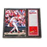 """""""St. Louis Cardinals Jim Edmonds Autographed Photo Plaque - Forever Collection"""""""