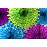 Devra Party 5-Piece Tissue Paper Fans, Peacock (13-18 Inches)