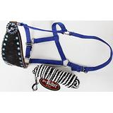 PRORIDER Horse Noseband Tack Bronc Leather Halter Tiedown Lead Rope 280631