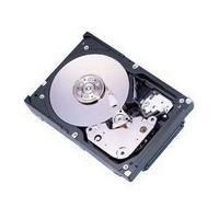 Fujitsu Enterprise MBA3073RC 73.5 GB Interbal SAS Hard Drive