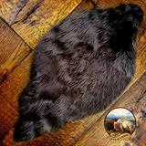 Premium Quality Faux Fur Beaver Skin, Grizzly Bear, Buffalo Hide Throw Rug Shag Sheepskin Area Toss Carpet (18''x24'', Black)