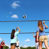 Dunlop Regulation Outdoor Volleyball Set w/ Steel Poles Vinyl/Plastic/Metal in Black, Size 37.0 H x 5.75 W x 9.25 D in | Wayfair NET100_097D