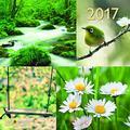teNeues Beautiful Momente A & I ART & IMAGE Kalender 30 x 30 cm weiß