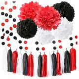 Black Red Graduation Decorations 2021 Minnie Mouse Party Supplies 18th Birthday Party Decorations/White Black Red Baby Ladybug Birthday Party Decorations/First Birthday Girl Decorations