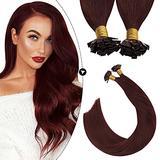 Ugeat Flat Tip Hair Extensions Human Hair 18 Inch Keratin Hair Fusion Hair Extensions 50g Fusion Hair Extensions Wine Red #99 Pre Bonded Hair Extensions