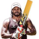 Spartan Gold Boss S6R Grade 1 Kashmir Willow Cricket Bat, Size 6
