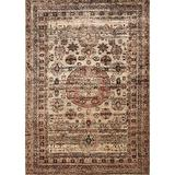 """Loloi AF-03 Anastasia Collection Distressed Area Rug 1'6"""" x 1'6"""" Sample Square Champagne/Multicolor"""