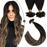 Ugeat Keratin U Tip Hair Extensions Human Hair 14 Inch Pre Bonded U Tip Human Hair Extensions 50strands Nail Tip Hair Extensions Human Hair Balayage Color Off Black to Brown with Blonde