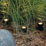 Pond Boss LED Well Light Plastic in Black, Size 6.5 H x 5.1 W x 8.6 D in | Wayfair 52369
