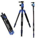 Zomei Z888C Professional Portable Carbon Fiber Tripod Stand with Ball Head Compact Travel for Canon, Sony, Nikon, Panasonic, Olympus, Fuji, Cameras and Video Camcorder Blue
