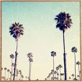 Deny Designs California Palm Trees - Picture Frame Print on Paper Paper in Blue/Brown, Size 12.0 H x 12.0 W x 1.0 D in | Wayfair 50568-frwasm
