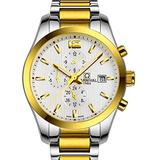 Men's Self Winding Mechanical Automatic Analog Luminous Watch Gold Plated Two Tone Stainless Steel Watch (Gold Watch)