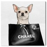 Oliver Gal 'Chihuahua Glam' Graphic Art Print on Canvas Canvas & Fabric in Green, Size 24.0 H x 24.0 W x 1.5 D in   Wayfair 26788_24x24_CANV_XHD
