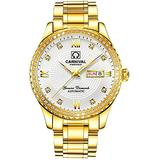 Mens Diamond Bezel Automatic Mechanical Watches Gold Silver Stainless Steel Sapphire Glass Waterproof Watch (Gold White)