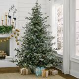 Christmas Aspen Pine Flocked Tree - 9' - Grandin Road